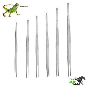YNR-Reptiles-Feeding-Tongs-Tweezers-Forceps-Hospitals-Metal-Stainless-Steel-CE