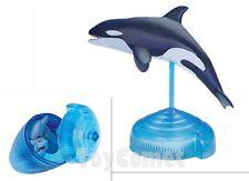 Orca Killer Whale Sea Animal Part I 4D 3D Puzzle Realistic Model Kit Toy