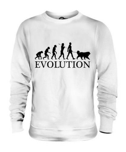 GREAT PYRENEES EVOLUTION OF MAN UNISEX SWEATER  Herren Damenschuhe LADIES DOG LOVER GIFT