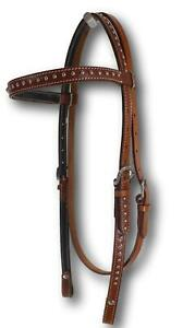 D-A-Brand-Medium-Oil-Headstall-w-Silver-Spots-Horse-Tack