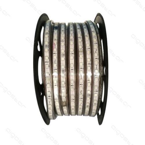 AC 240 V Bande DEL étanche IP65 5050 SMD RGB commercial Couleur Tube lumineux 50 m
