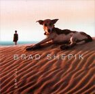 The Well by Brad Shepik (CD, Jun-2004, Songlines Recordings)