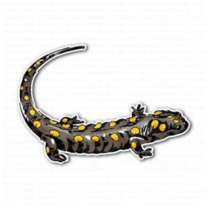 Yellow-Spotted-Lizard-Salamander-Laptop-Locker-Car-Bumper-Sticker-Decal