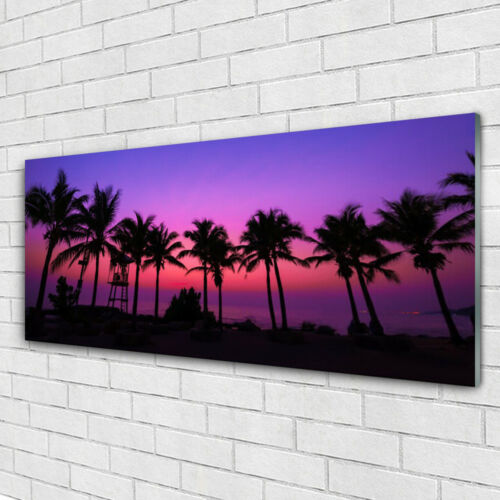 Acrylglasbilder Wandbilder Druck 125x50 Palmen Landschaft