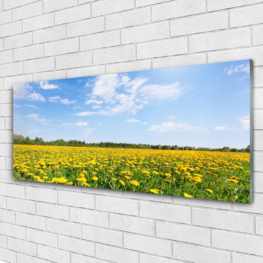 Impression sur verre Wall Art 125x50 Photo Image Dandelion Meadow Paysage