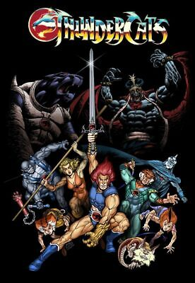 THUNDERCATS CARTOONS Poster Wall Art Home Photo Print 24x36 inches 2