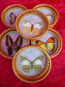 6 Belle, Vieux Dessous De Verre __holz-gals__ Papillons