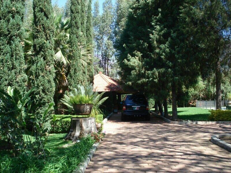 Preciosa propiedad en San Francisco Tutla, hermoso terreno y casa con alberca!