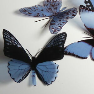 25-Pack-Butterflies-Violet-Blue-5-to-6-cm-Cakes-Weddings-Crafts-Cards