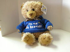 "I'm The Big Brother Teddy Bear By Petting Zoo, 10"", Brand New"