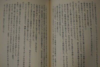 Witchblade Midori no Shojo Lost Generation JAPAN Satoshi Ichikawa novel