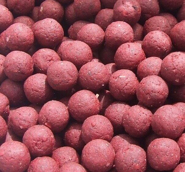 Shelf life boilies sessionbaitsuk rot krill 15mm 5kg special summer prices
