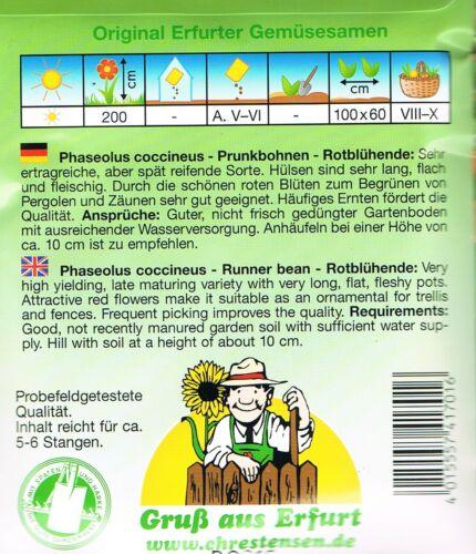 Prunkbohnen /'Rotblühende/' Feuerbohnen Stangen Bohne  Saatgut  Gemüse  473021