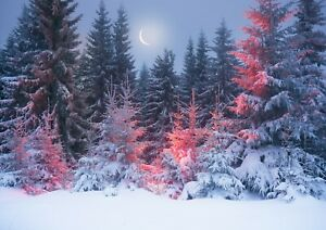 Snowy-Night-Forest-Poster-Print-Size-A4-A3-Winter-Nature-Poster-Gift-12424