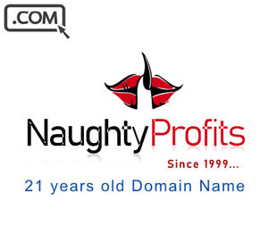 NaughtyProfits-com-Premium-Brandable-domain-name-for-sale-21-years-old