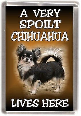 """Chihuahua Dog No 1 Fridge Magnet /""""A VERY SPOILT . LIVES HERE/"""" by Starprint"""