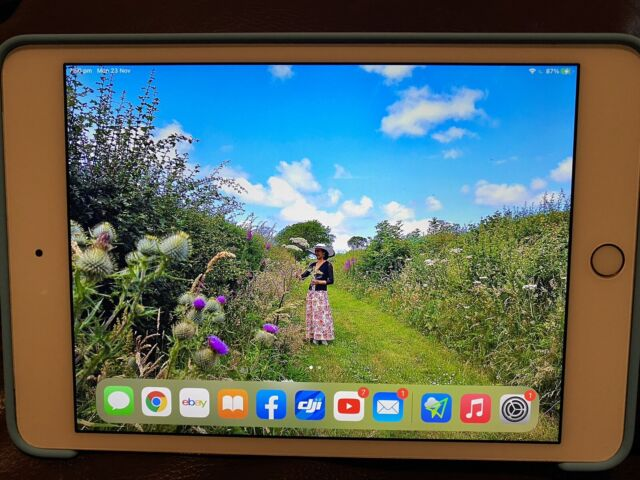 Apple iPad mini 4 128GB, Wi-Fi + Cellular (Unlocked), 7.9in - Gold (AU Stock)