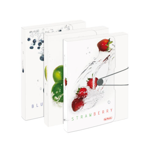 "Heftbox 3 verschiedene Motive /""Fresh Fruit/"" 3x Herlitz Sammelbox DIN A4"