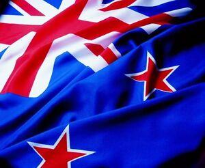 3X5 NEW ZEALAND FLAG NATIONAL BANNER 3/'X/'5/' F537