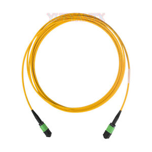 5M-MPO-MPO-Female-8-Fibers-Type-B-9-125-Single-Mode-Elite-Trunk-Cable-Patch-Cord