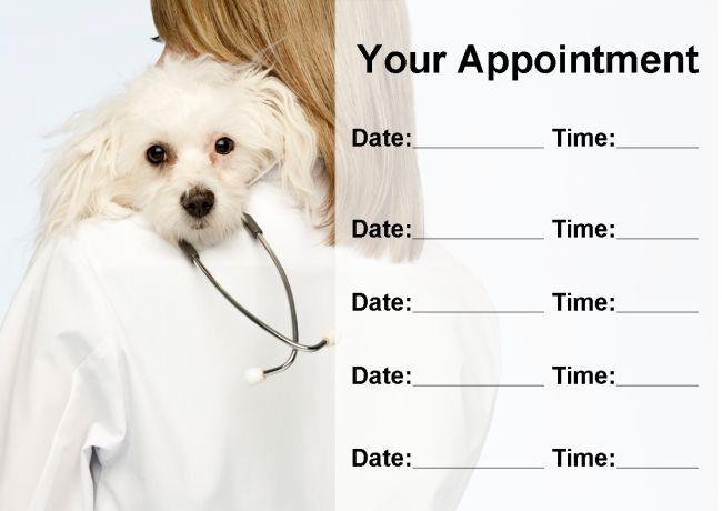 La FP veterinarios practicar Perro Personalizado nombramiento Tarjetas