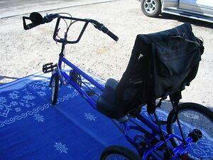 Image Is Loading Recumbent Bike Sun Classic