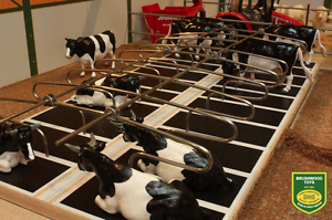 BRUSHWOOD TOYS 1:32 SCALE METAL COW CUBICLES DOUBLE ROW BT2099 MIB