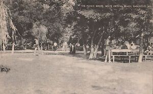 Image Is Loading The Picnic Grove At White Crystal Beach In