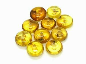 BALTIC-AMBER-10-Tablet-Beads-INSECTS-DRILLED-For-Bracelet-Necklace-Prayer-13092