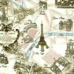 Cotton Fabric Fat Quarter quilting Timeless Treasure Map of the world metallic