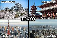SOUVENIR FRIDGE MAGNET of TOKYO JAPAN