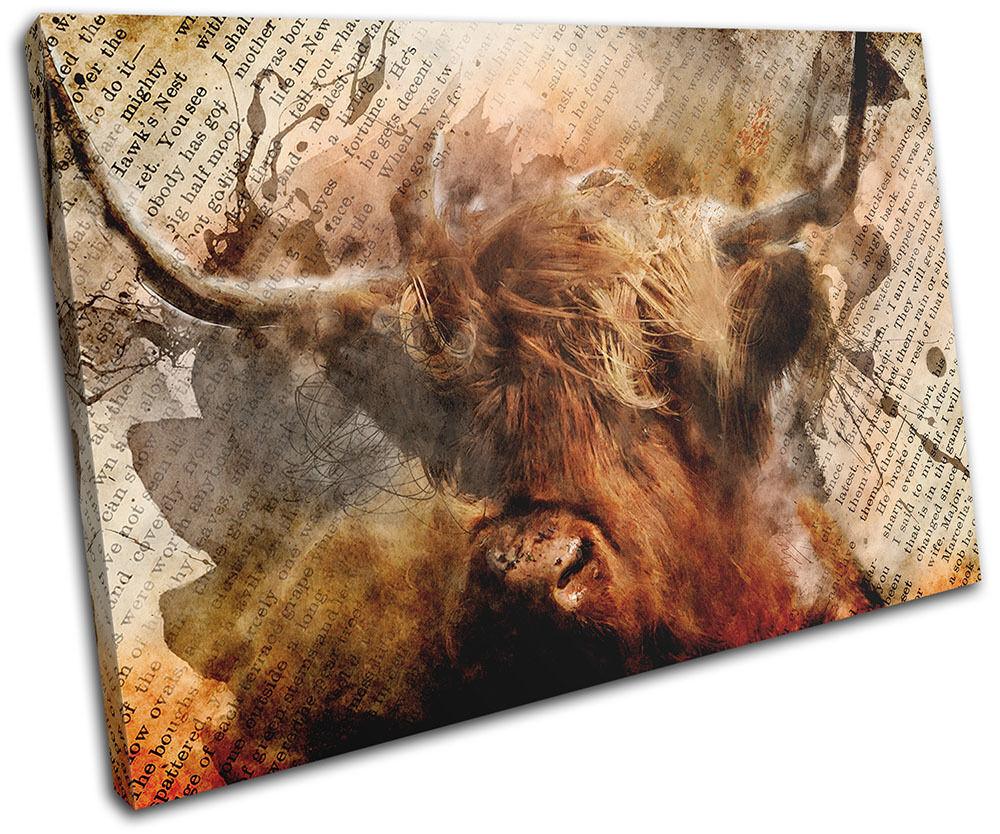 Highland Cow Old Vintage Animals SINGLE Leinwand Wand Kunst Bild drucken