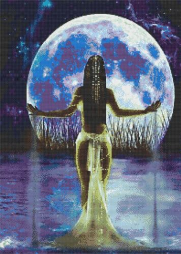 Moon Maiden-Counted cross stitch chart