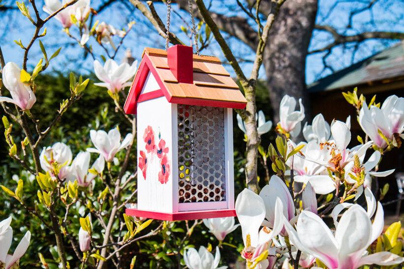 Grazioso Disegno FLOREALE PAPAVERO DA APPENDERE Bird House Alimentatore tabella
