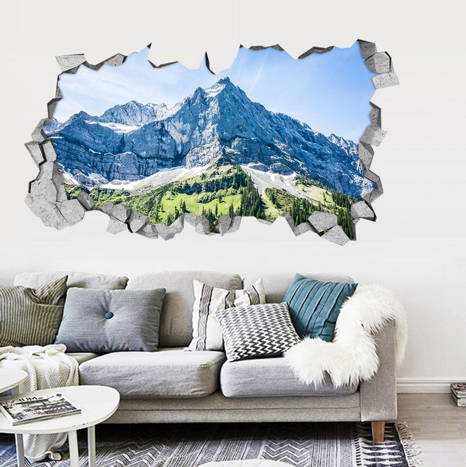 3D Pietra Montagna 0027 Parete Murales Adesivi Decal Sfondamento AJ WALLPAPER IT
