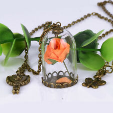 Handmade Retro Real Rose Dried Flower Glass Bottle Chain Necklace Pendant Women