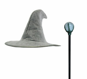 Adult Wizard Sorcerer Magus Magician Pointed Hat & Staff Halloween Accessory Set