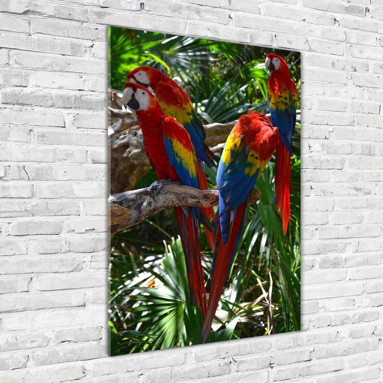 Wand-Bild Kunstdruck aus Acryl-Glas Hochformat 70x100 Ara Papageien