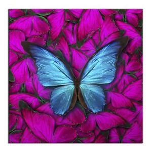 Mandala Schmetterling Hochwertiges Leinwand Bild Feng Shui Bilder Poster 20555