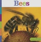 Bees by Aaron Frisch (Hardback, 2014)