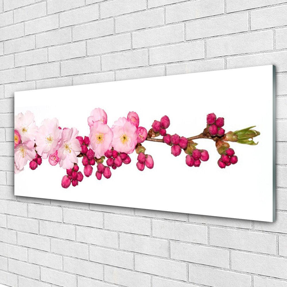 Acrylglasbilder Wandbilder aus Plexiglas® 125x50 Blüten ZWeiß Pflanzen