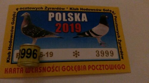 pigeon rings from PL 2019 with cards Zyrardow