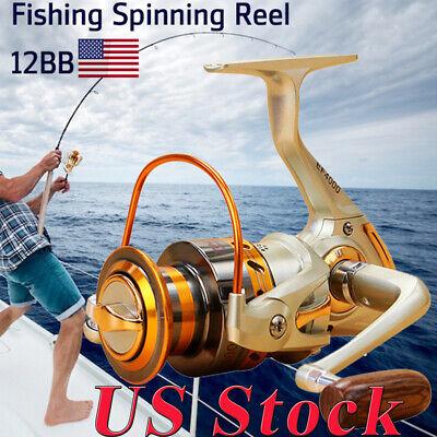 Saltwater Freshwater 12 BB Ball Bearing Spinning Reel Right Left Fishing CTR
