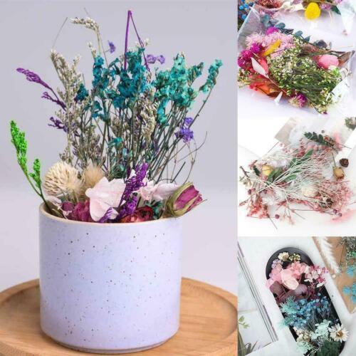1 Beutel Mixed Dried Flowers Fotorahmen Handmade Candle Epoxy Resin DIY L3N2