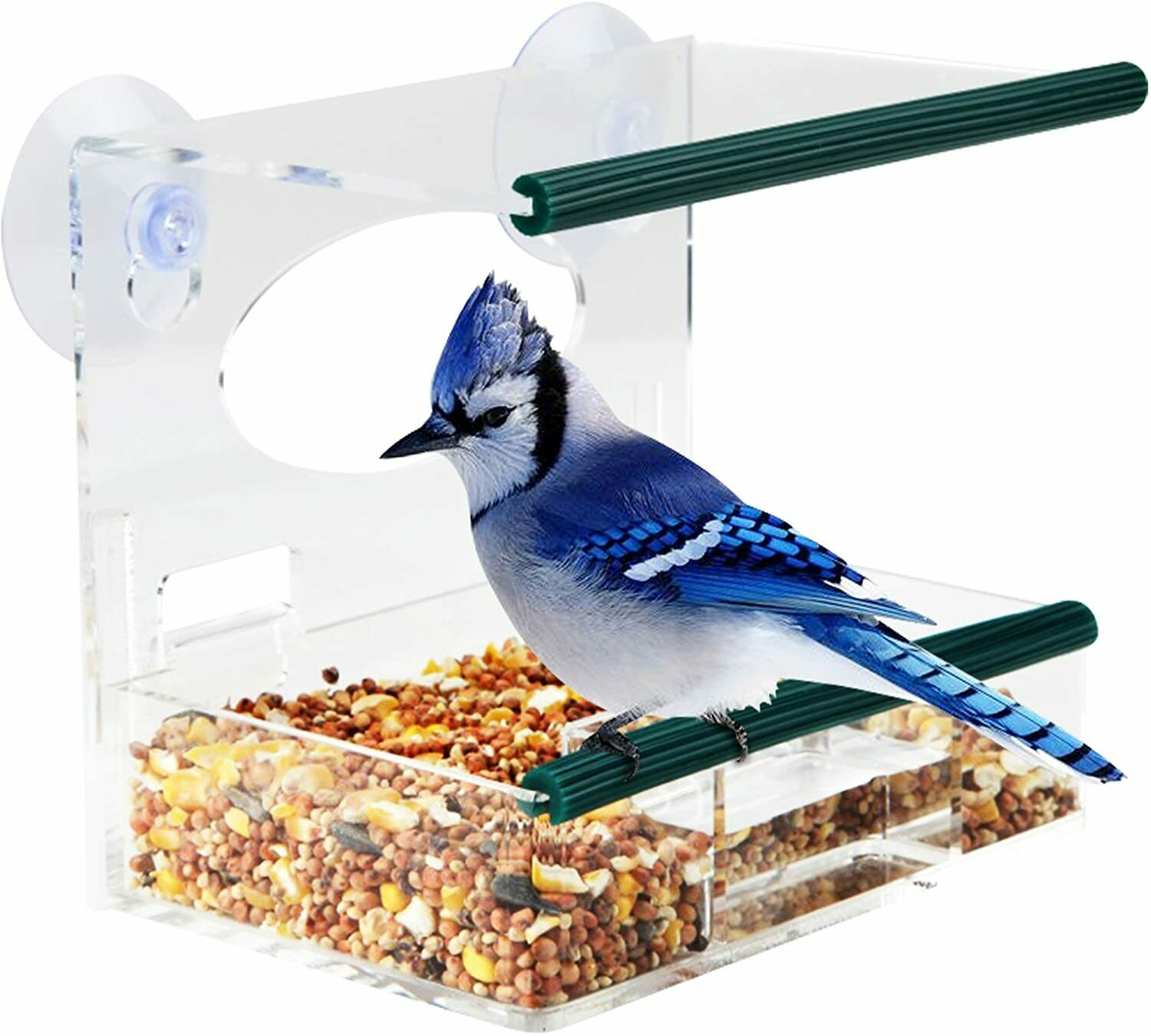 Image 1 - Window-Bird-Feeder-for-Outside-with-Strong-Suction-Cups-amp-Removable-Tray
