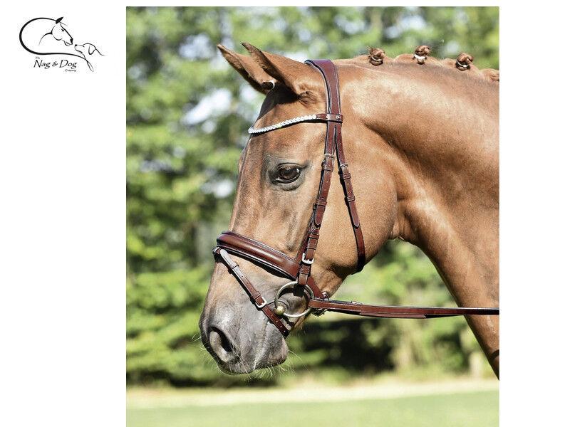 Busse Briglia Flash Comfort Comfort Comfort Anatomico Pelle Italiana Nero Marronee GRATIS P&P | prezzo di vendita  | flagship store  2ae011