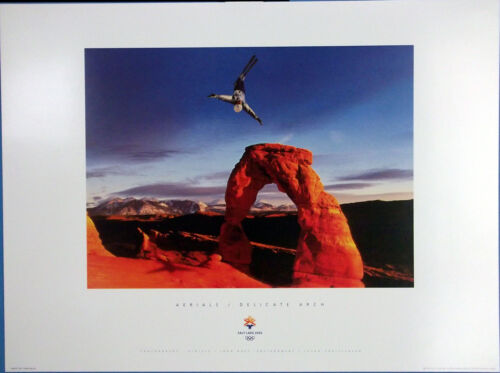 """USA SLC 2002 Olympic Poster  Sports Series Unisex Adult AERIALS 13/"""" X 18/"""""""