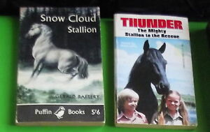 Snow-Cloud-Stallion-Gerald-Raftery-amp-Thunder-the-Mighty-Stallion-Mike-Jahn