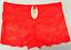 Ladies-Lace-Panties-Underwear-Briefs-Knicker-Lingerie-Comft-Pants-Sexy-Nightwear thumbnail 5