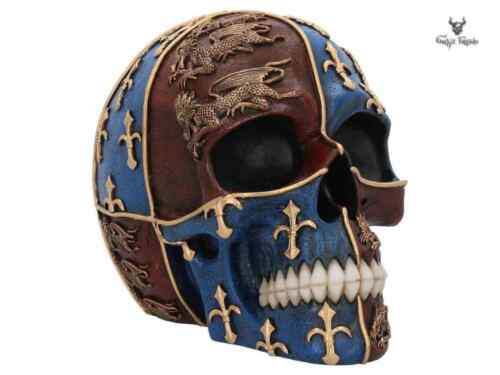 Medieval Skull emblazoned with the royal standard of Edward III three gold lions